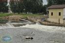 Geraer Hochwasserschäden an der Weißen Elster 2013